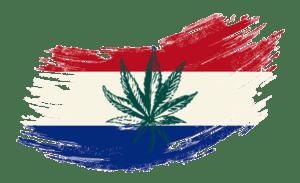French flag with cannabis leaf