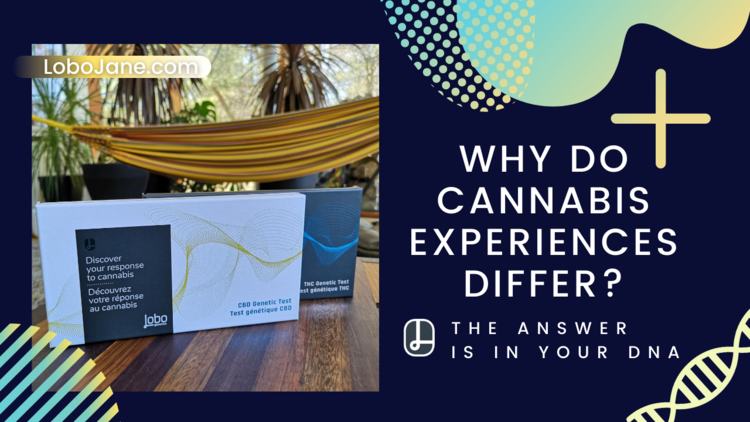 WHY DO CANNABIS EXPERIENCES DIFFER?