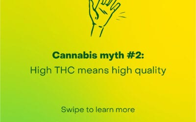Cannabis Myth #2 – High THC means high quality