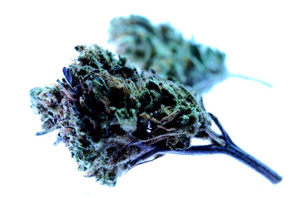 Cannabis Shopping